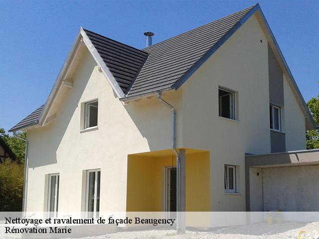 nettoyage facade maison free bois maison btiment. Black Bedroom Furniture Sets. Home Design Ideas