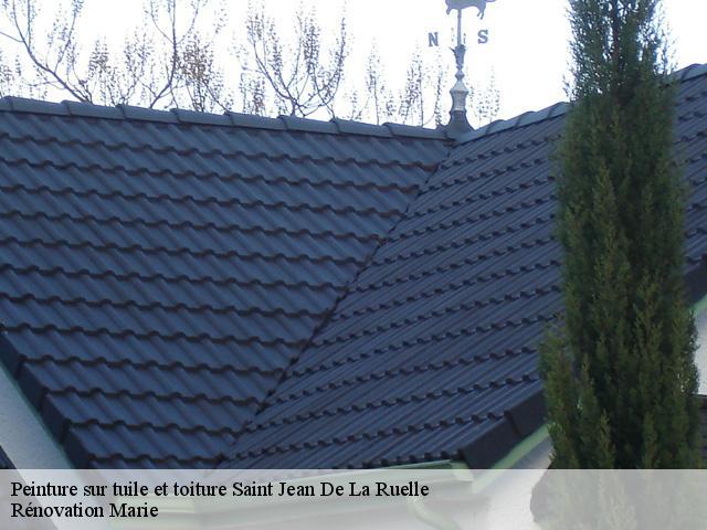 Peinture sur tuile et toiture Saint Jean De La Ruelle tél ...